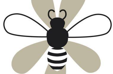 BeeFit Alimentos Funcionais e Proteicos